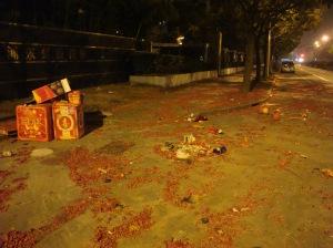 Firework Litter