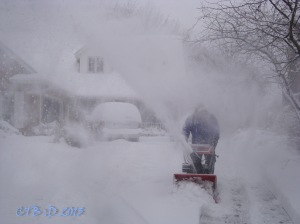 Snow Blowing the Driveway