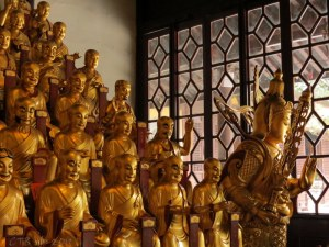 Hundreds of Golden Buddhas