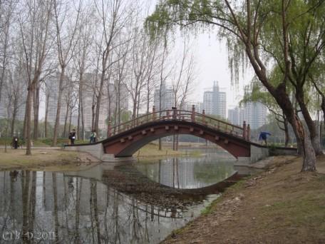 Century Park Spring 2011
