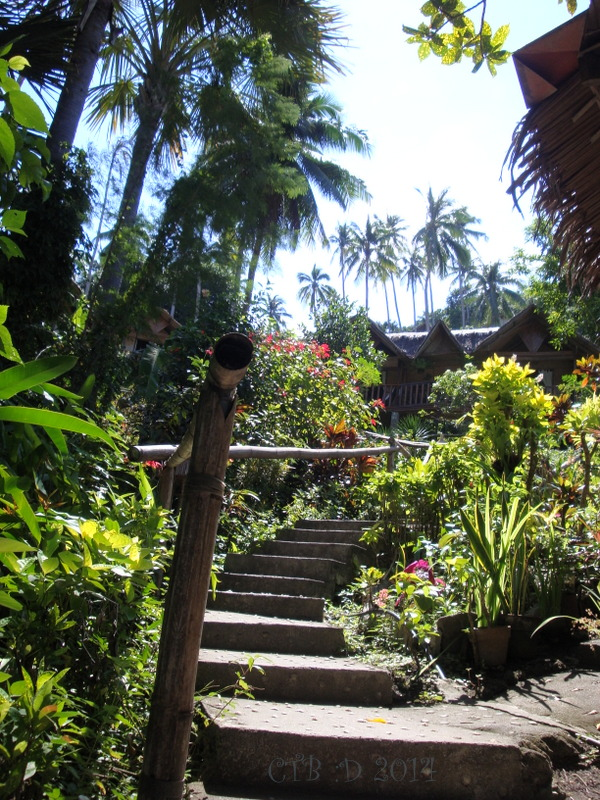 steps leading up the hillside to the huts
