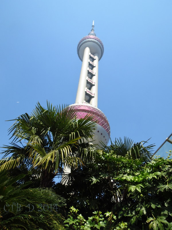 The Pearl Tower -Shanghai, China