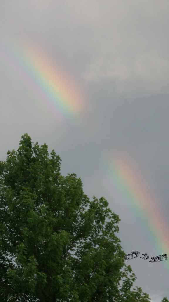 Rainbow20140705_080227