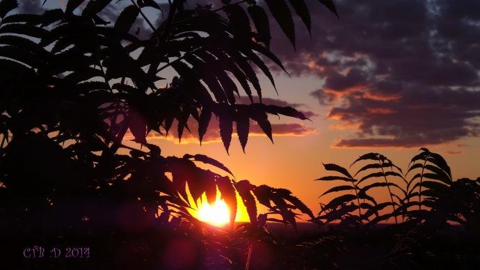 Sunset20140705_085609