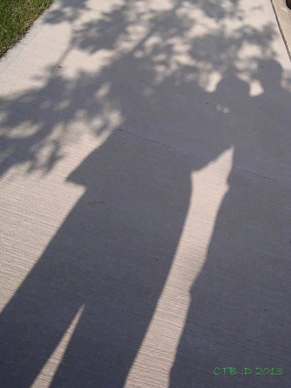 Maple leaves, John and I in Shadow